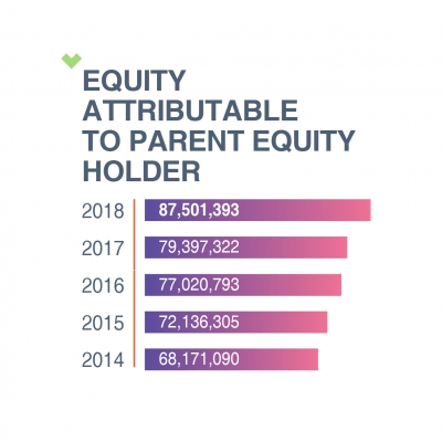 EQUITY ATTRIBUTABLE TO PARENT EQUITY HOLDER