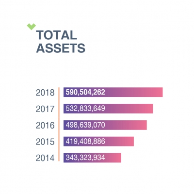 TOTAL ASSETS